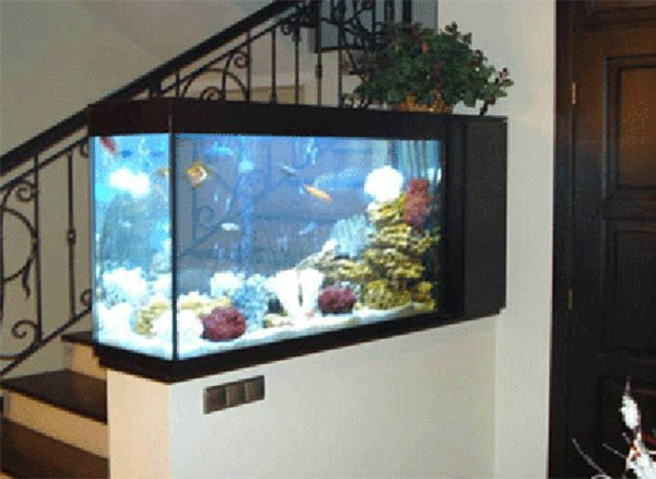 aquarium interior design