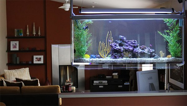 aquarium living room. Top 7 Aquarium Designs for your Interior Design