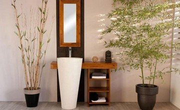 bathroom design with nature