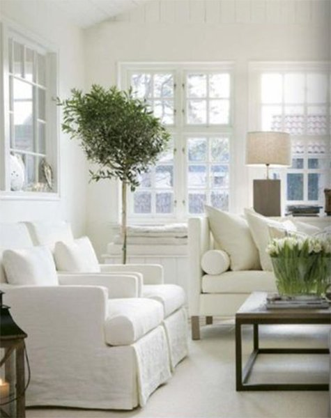 white living room feng shui design with plants