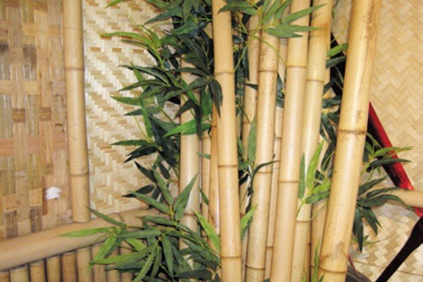 Bamboo Sticks Decoration Ideas ~ Go eco friendly with bamboo interior designs