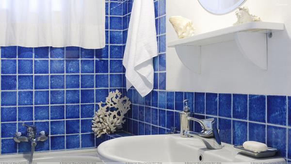 Blue and White Bathroom Decoration 4