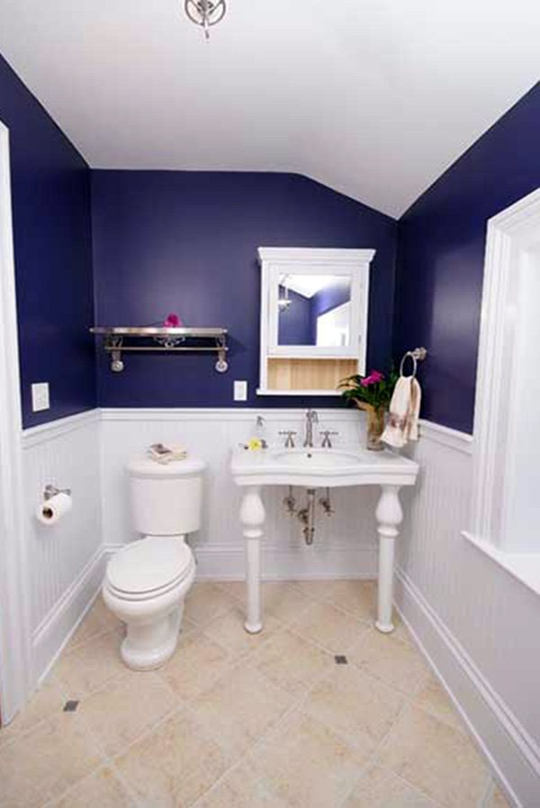 blue-white-small-bathroom